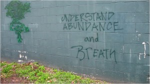 Understand Abundance